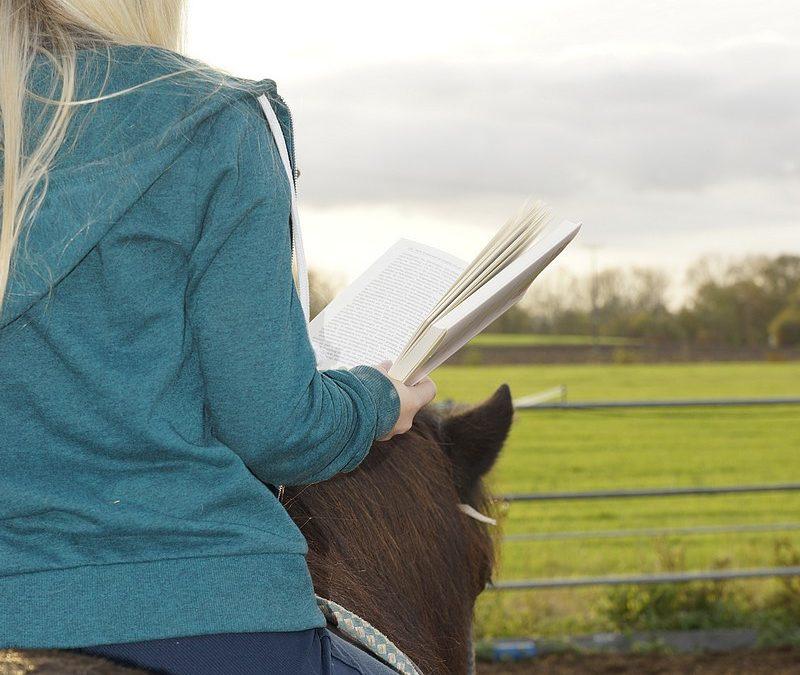 Termine – Zertifizierte Reittherapie Ausbildung Solid – Wochenendkurs